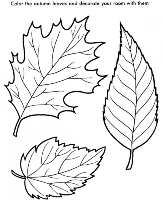 550x672 Fall Autumn Leaves Coloring Page With 1