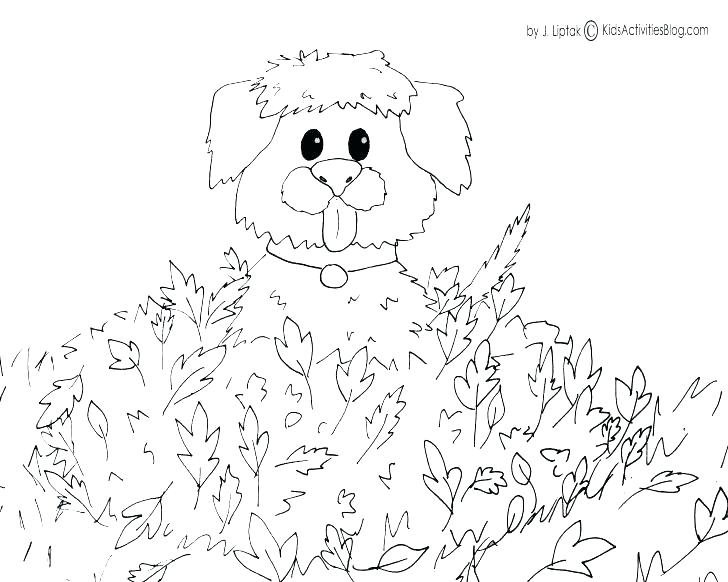 728x582 Fall Coloring Pages Printable Autumn Coloring Pages Thanksgiving