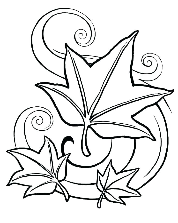 736x920 Leaf Coloring Page Coloring Page Of Leaves Thanksgiving Leaves