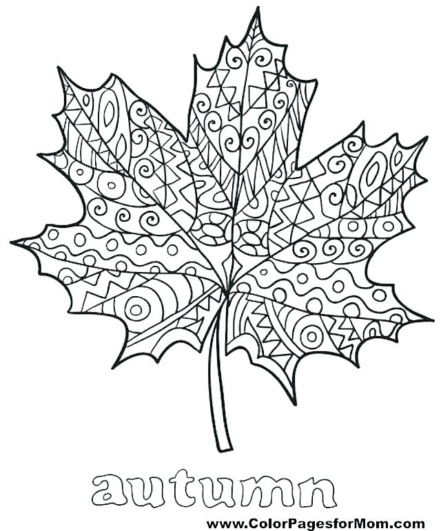 640x771 Printable Coloring Page Fall With Leaves And Some Activities Your