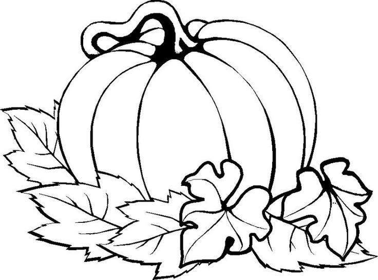 736x544 Pumpkin Coloring Pages For Preschool 9 Pumpkin Coloring Pages
