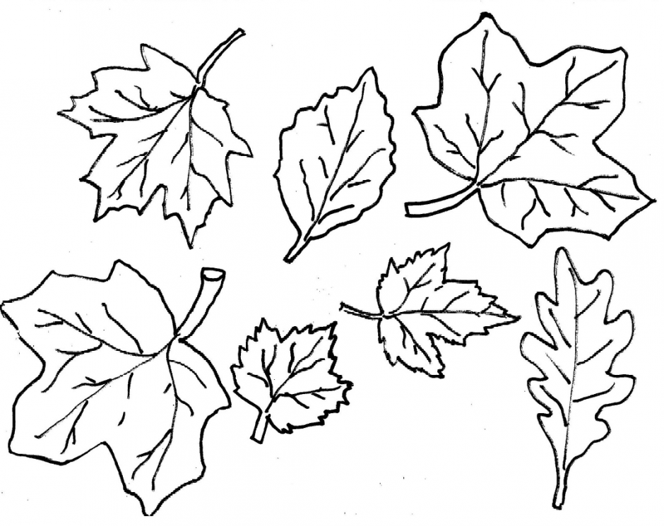 940x745 Autumn Leaves Coloring Pages Fall Season 22 Nature Printable