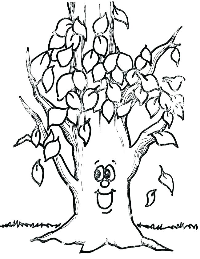 650x841 Tree Without Leaves Coloring Page