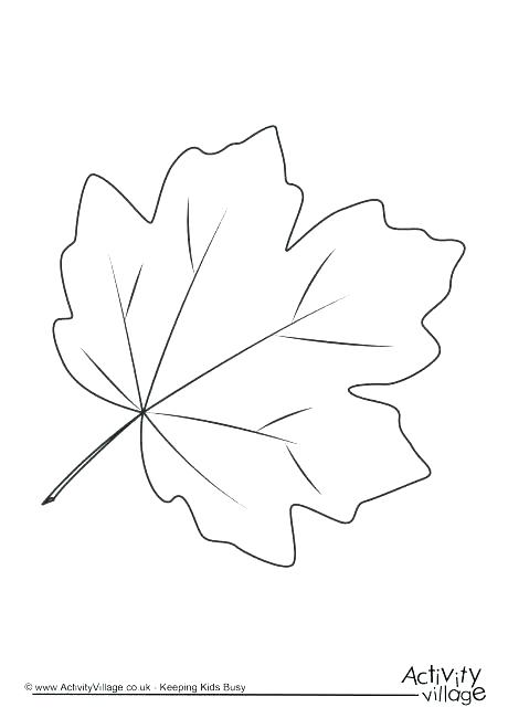 Tropical Leaves Coloring Pages
