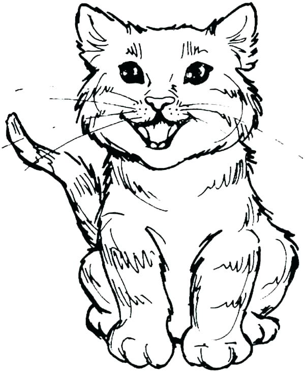 wild cats coloring pages print - photo#18