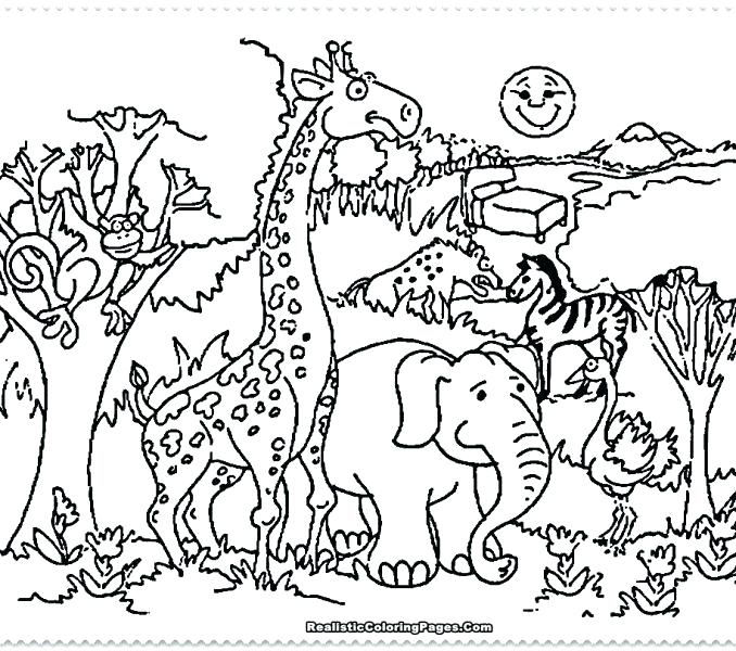 678x600 Charming Zoo Coloring Pages To Print Zoo Coloring Pages Amazing