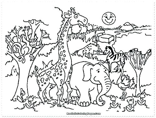 500x380 Coloring Pages Zoo Animals Fresh Zoo Animals Coloring Pages